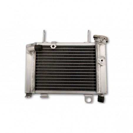Radiator apa CBR 125R/RT/RS '12-19