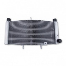 Radiator apa V-MAX 1700'09-19