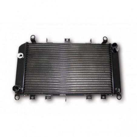 Radiator apa Z1000 03-06