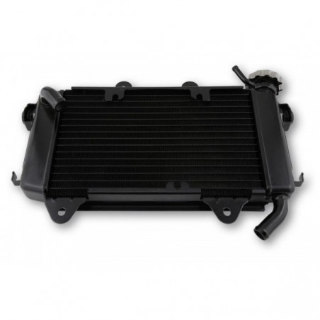 Radiator apa 125/200 Duke