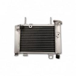 Radiator apa CBR 125R/RT/RS '12-19