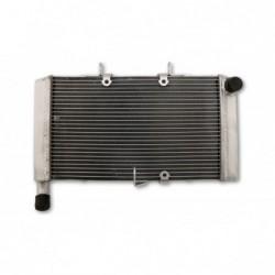 Radiator apa CBR 600F/FA '11-13