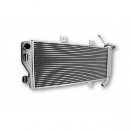 Radiator apa ER-6F 12-16